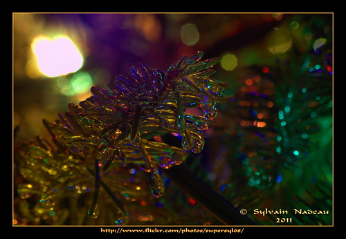 Le Temps Des Fêtes... The Holiday Season | by Supersyl08