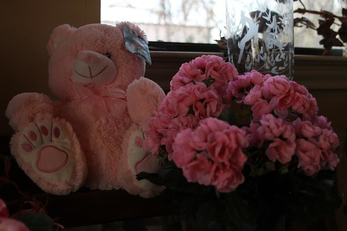 Traditions Flowers & Gifts Paris Texas 1-18-12 | by In Paris Texas