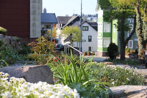 Pension Oder Hotel In Bad Gandersheim