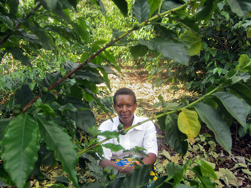 Cocamu Coffee Cooperative | by UN Women Gallery