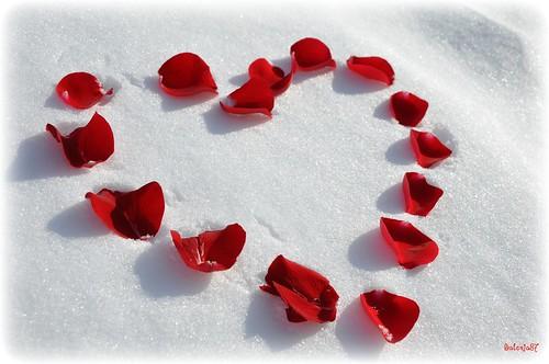 Un ♥ sur la neige.