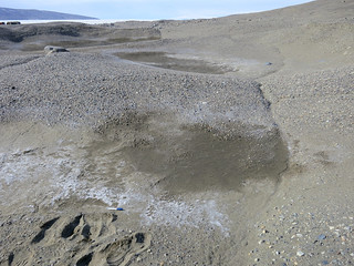 McMurdo Dry Valleys | by Oregon State University