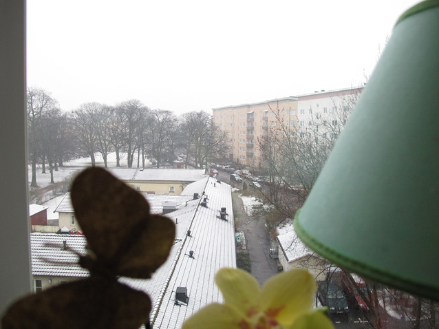 thursday 8th of march: the last snow (?)