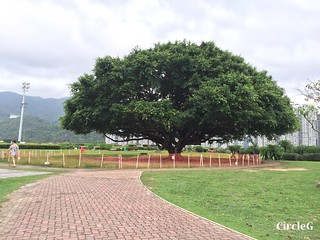 CIRCLEG 遊記 沙田 火炭 彭福公園公園 (17)