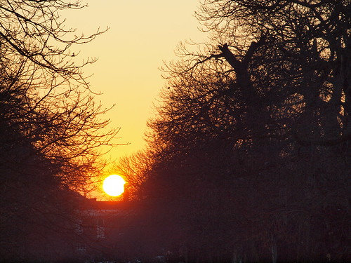 Sunset over Greenwich park | by Simon Bolton UK