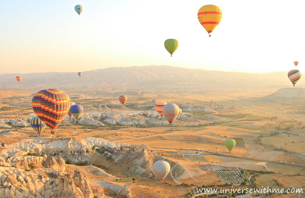 Y_Turkey077