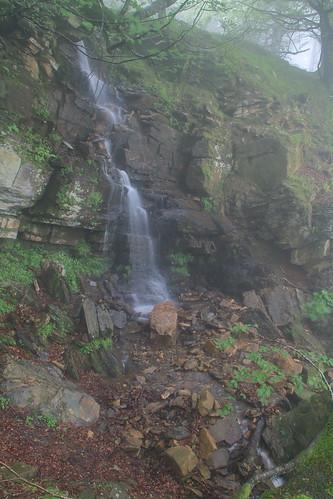 Parque Natural de #Gorbeia #Orozko #DePaseoConLarri #Flickr -178