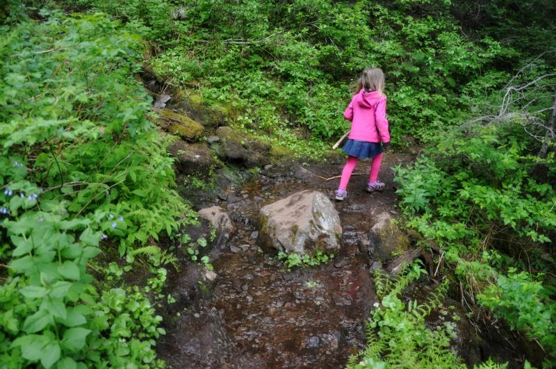Triangulation Peak Hike 17 @ Mt. Hope Chronicles