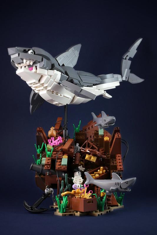 Sharks Treasure-1