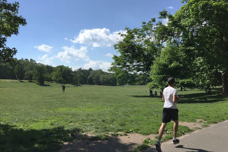 Brooklyn jogger