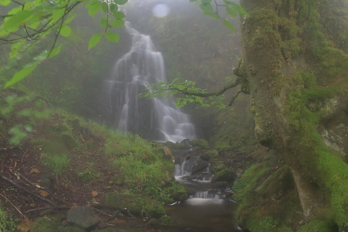 Parque natural de #Gorbeia #Orozko #DePaseoConLarri #Flickr -096