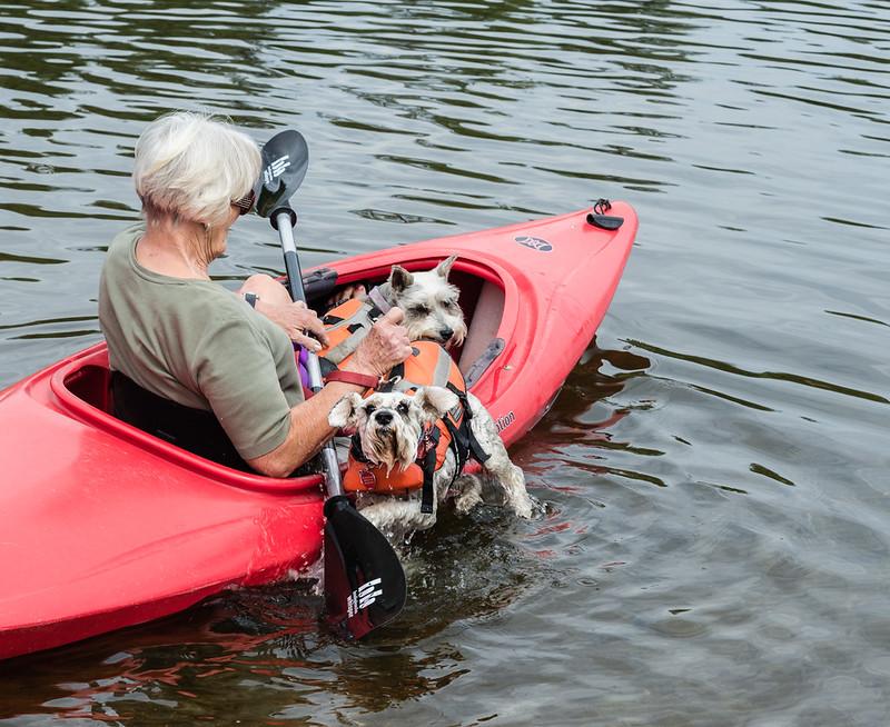 Kayak Schnauzers 2