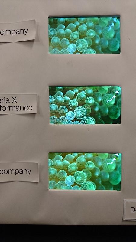 Xperia X Performance 05