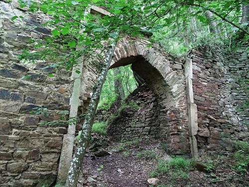 Wensburg castle ruin