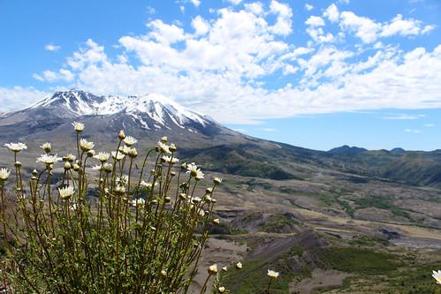 Mt.St.Helens-42