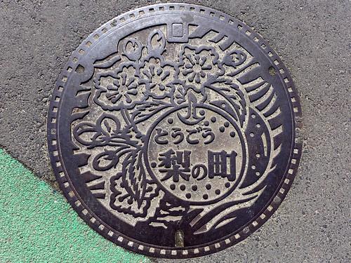 Togo Tottori, manhole cover 2(鳥取県東郷町のマンホール2)
