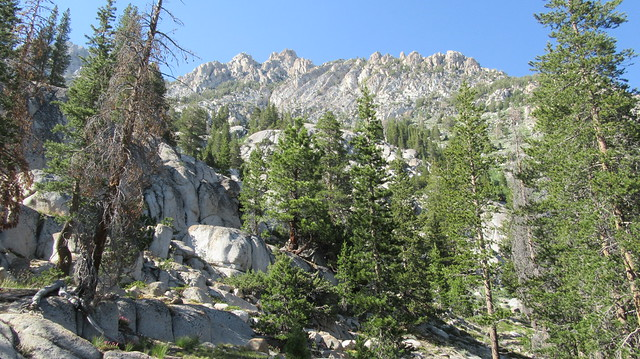 Backpacking Leavitt Meadows to Buckeye Canyon