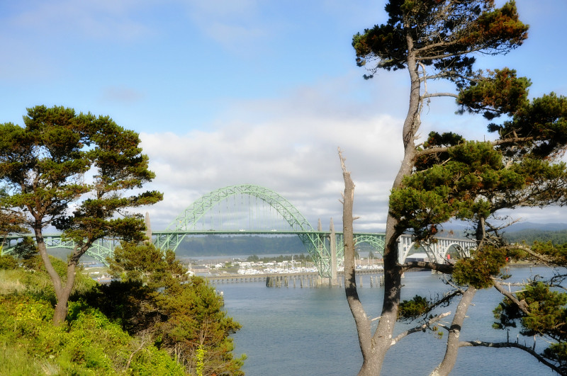 Newport Bridge @ Mt. Hope Chronicles