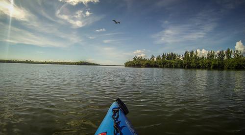 Indian River Paddling-43