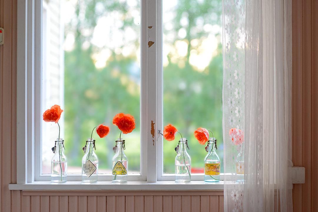Vintage bottles as flower vases for poppies