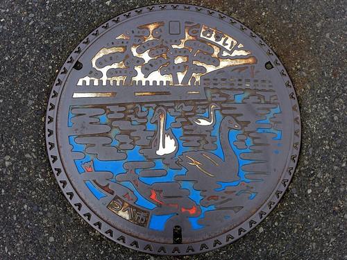 Ube Yamaguchi, manhole cover 3 (山口県宇部市のマンホール3)