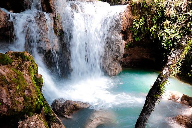 Cascadas de Agua Azul (45)