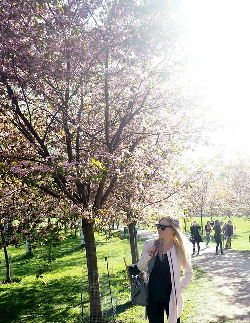 candygirlcherrytreepark2P5125066, cherry park, helsinki, suomi, finland, roihuvuori, kirsikkapuisto, cherry tree park, kirsikkapuu puisto, blossom, kukinta, sakura, itä-helsinki, east helsinki, lovely, ihana, green, pink, vihreä, pinkki, sun, aurinko, flowers, kukat, blossom, kukinta, may, toukokuu, kevät, spring, vaaleanpunainen, takki, coat, light pink, pale pink, cherry blossom girl, kirsikankukka tyttö, nature, luonto,