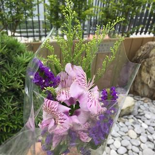 papaflowersfrommum