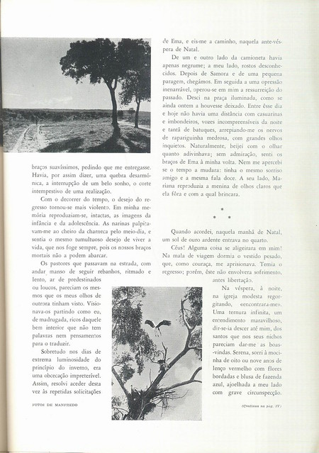 Panorama, No. 22, 1944 - 65