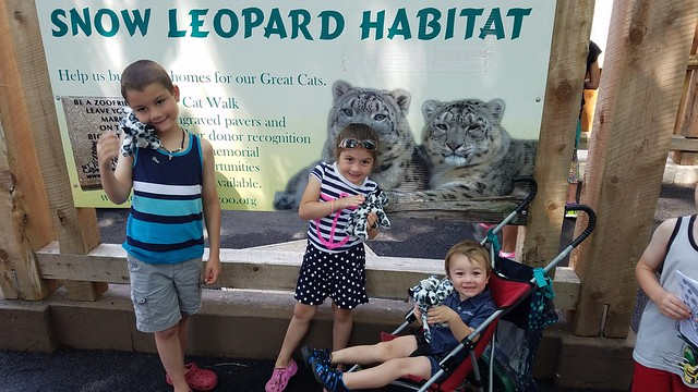 Cape May Zoo