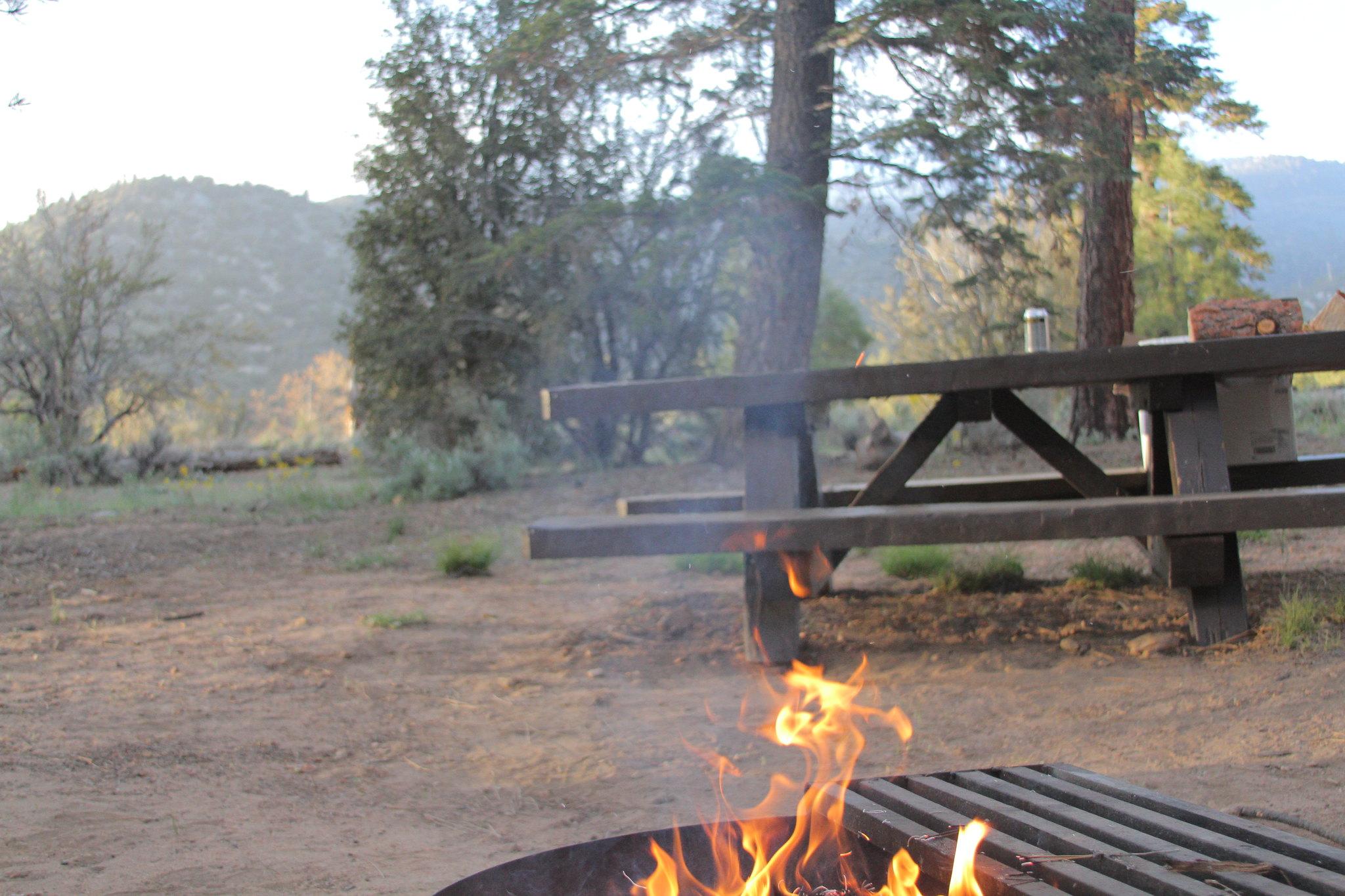 Heart Bar Campground - San Bernardino National Forest