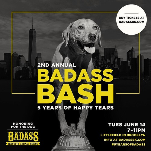 All my friends in #NYC! Our friends at #badassbrooklynanimalrescue are having a birthday, and they are honoring #pohthedogsbigadventure to celebrate Please come out and join us June 14th !!@badassbrooklyn A Badass Bash: Five Years of Happy Tears Tuesday,
