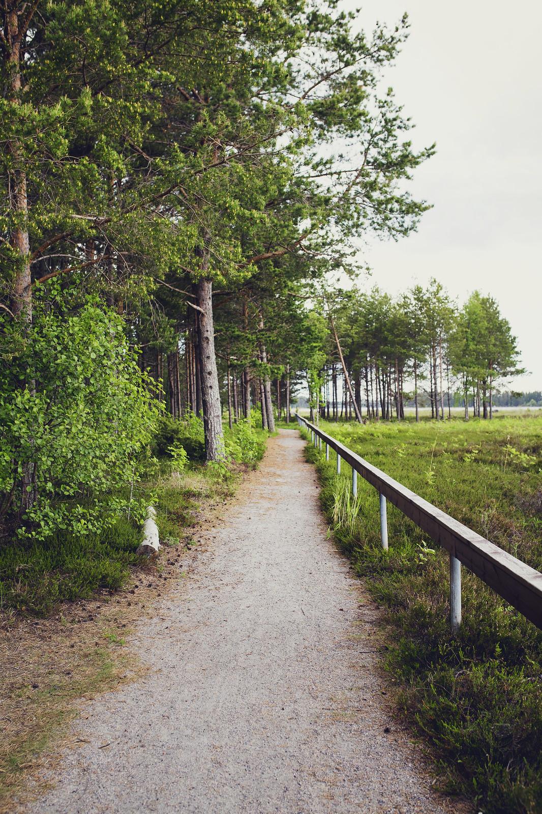 Stenöorns Naturreservat - Evelinas Ekologiska