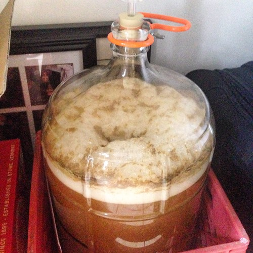 Vicious H-Bomb about 19 hours post-pitch. Steady stream of airlock bubbles (90+ per minute). #homebrewing