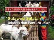 Dibuka Pengiriman Massal ke Sulawesi Selatan, Juli 2016 (Ditutup)