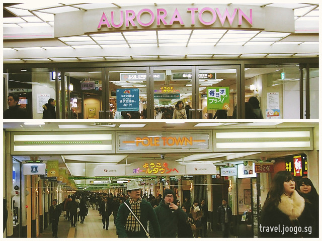 Aurora and Pole Town 2 - travel.joogo.sg