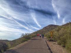 Tumamoc Hill Hike