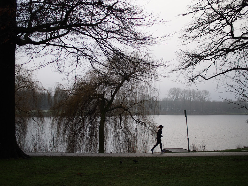 登博斯 冬季 Den Bosch Winter Lake Ertveld Plas