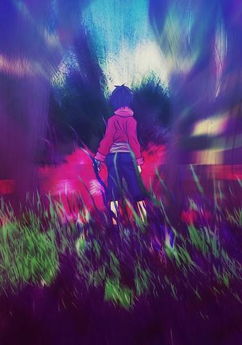 Cambio de Flickr