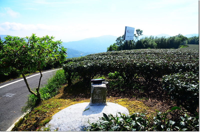 海鼠山三等三角點(# 5031 Elev. 1311 m) 1
