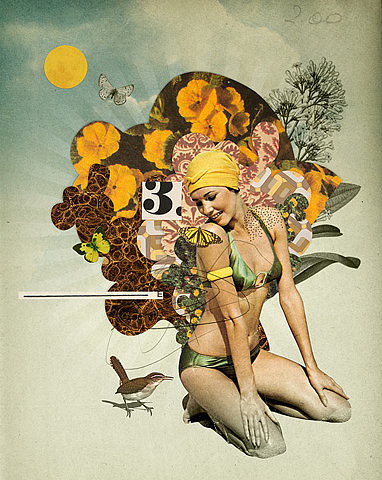 Lady and Bird. Eduardo Recife.