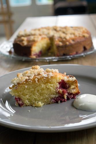 Gâteau aux framboises et noix de coco3