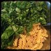 #Pasta #Fresca #Tuna #Homemade #CucinaDelloZio - spinach chicory basil