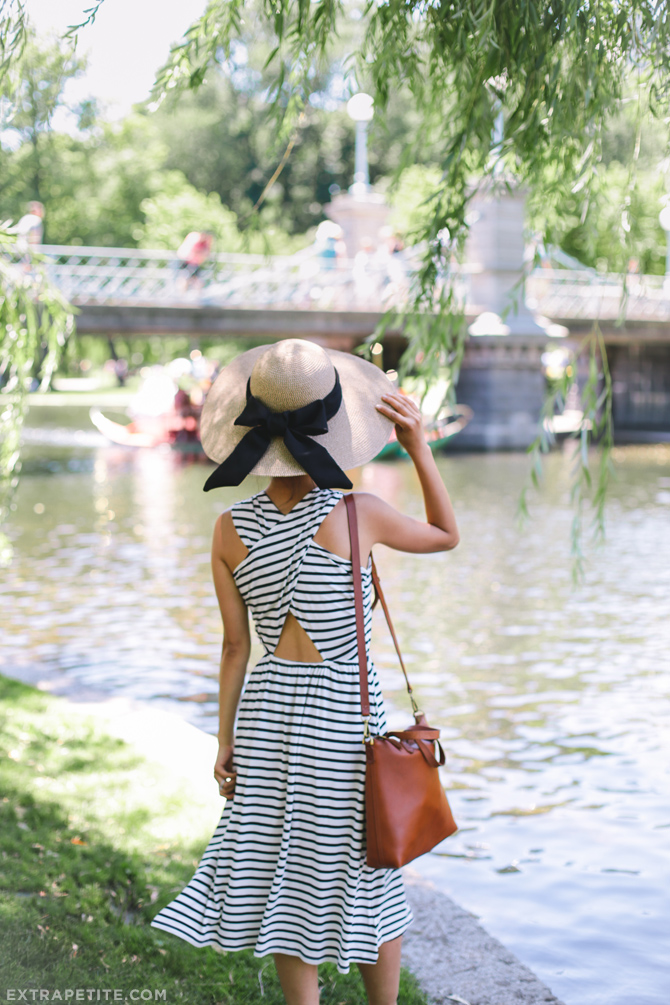 boston public garden_extra petite fashion blog