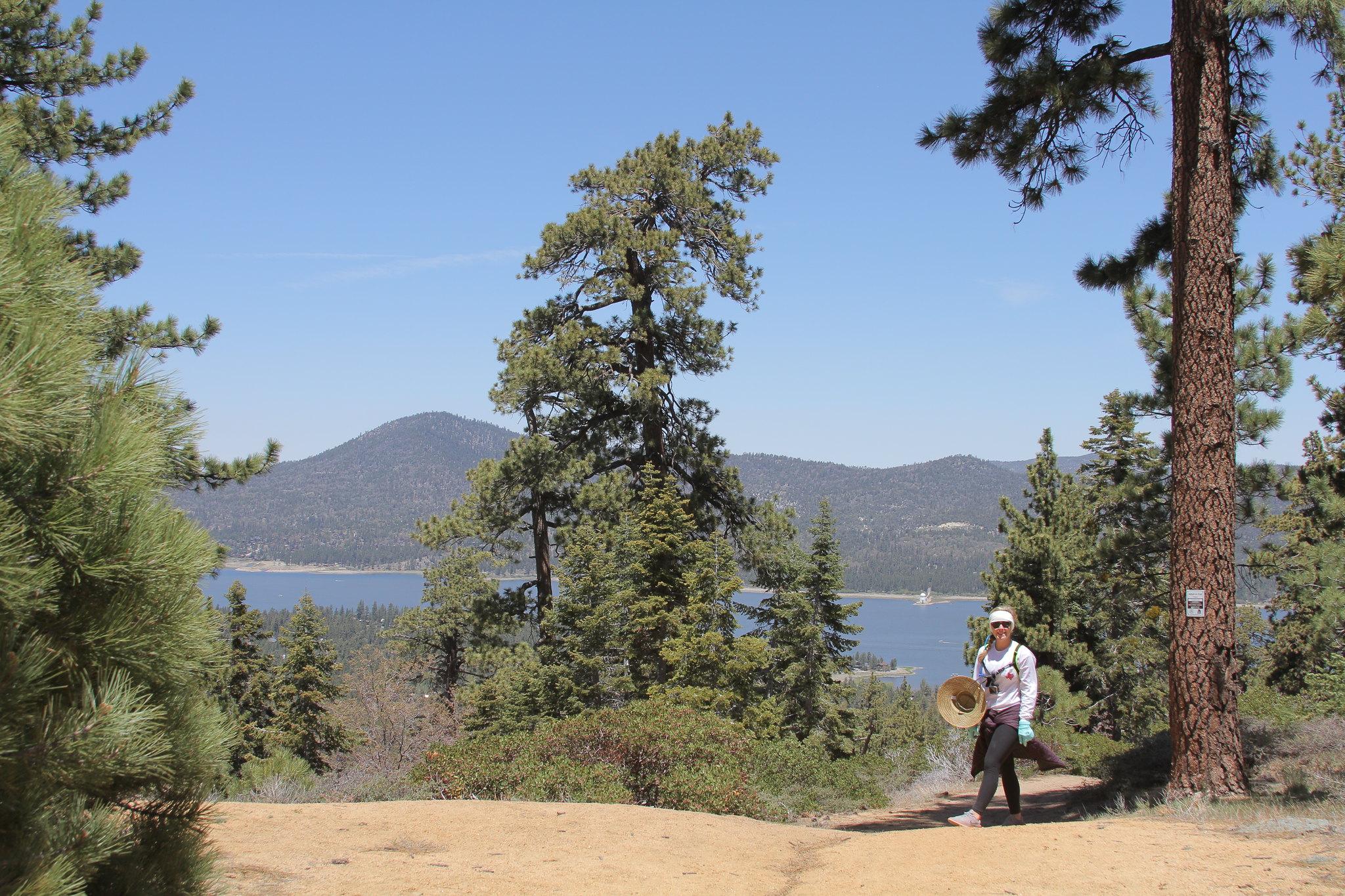 Knot Pine Trail - San Bernardino National Forest