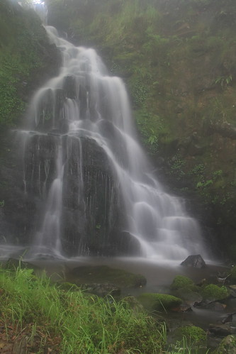 Parque natural de #Gorbeia #Orozko #DePaseoConLarri #Flickr -097