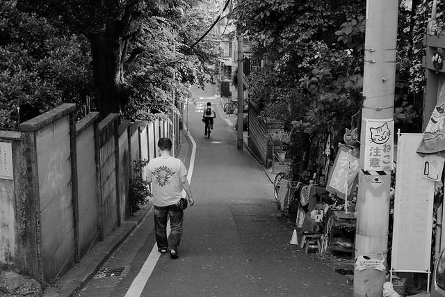 FUJI2156.jpg