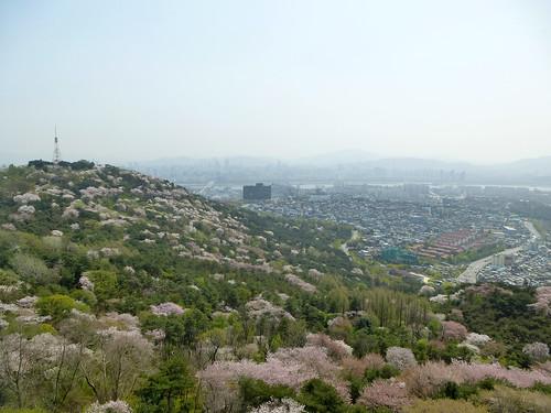C16-Seoul-Mont Namsan-Tour-j7 (11)