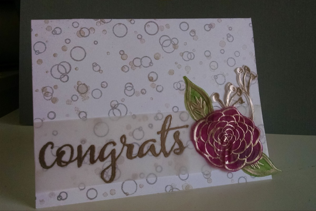 transparent_winner_congrats_CASE_by_MeganBeth