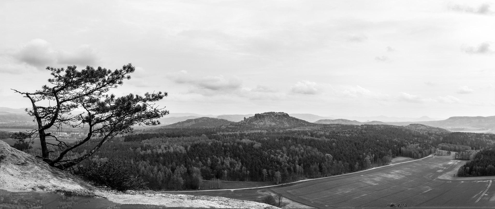 View from the Pfaffenstein